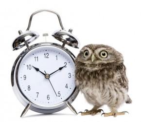 sova-hodiny-small